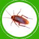 cucaracha icon 1
